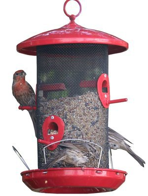 Wild Bird Seed Feeder Outdoor Decorative Garden Metal Hanging Food Dome Mesh House