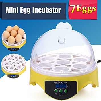 Pesters Mini Egg Incubator
