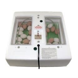 Fall Harvest Product Circulated Air Incubator