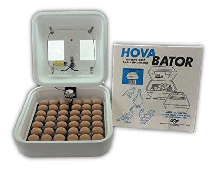 HovaBator Starter Egg Incubator Combo Kit
