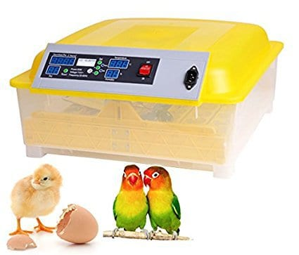 Oanon Automatic 48 Digital Clear Egg Incubator Hatcher
