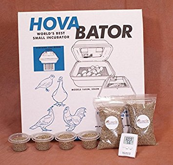 Hova-Bator Still Air Egg Incubator Kit for Reptiles