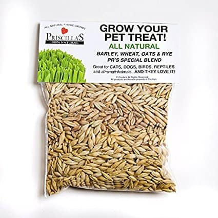 Priscillas Kitty Cat Pet Grass Seed Refill Pack