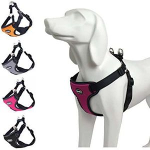 BINGPET No Pull Dog Harness