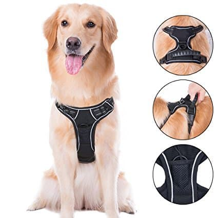 Cos2be Pets Accessories-No Pull Harness