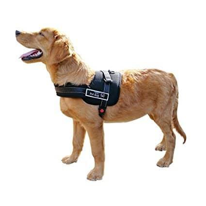 Le mate Dog Harness