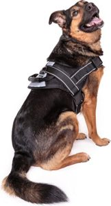 Friends Forever Big Dog Reflective No Pull Harness