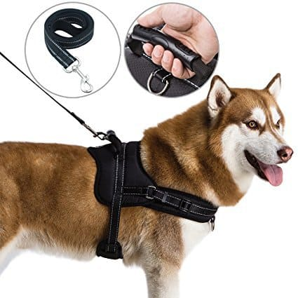Mihachi Dog Harness with Handle