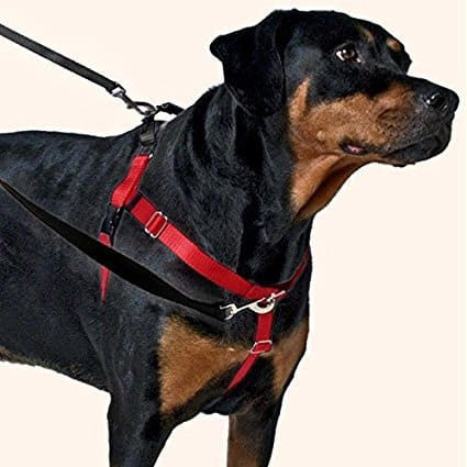 harness 27 min the 50 best no pull dog harnesses of 2019 pet life today
