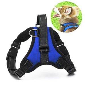 Menyda Adjustable Reflective Dog Harness With Handle