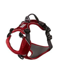 My Busy Dog Dog Harness