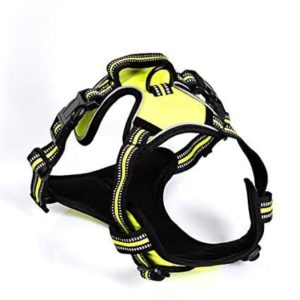 Tenwell Front Range Dog Harness