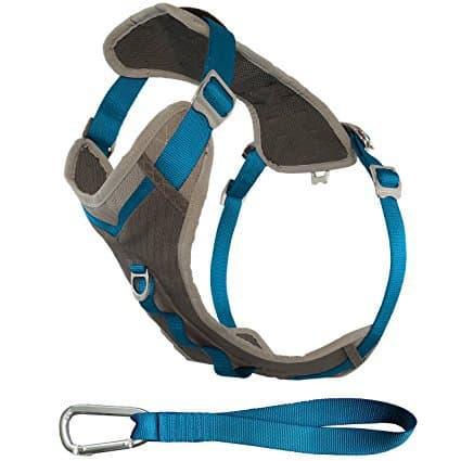 Kurgo Journey(TM) Dog Running Harness