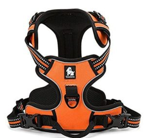 EXPAWLORER Front Range No-Pull Dog Harness