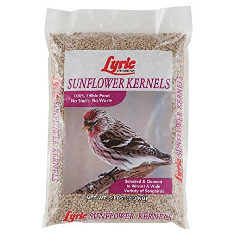 Lyric Sunflower Kernels