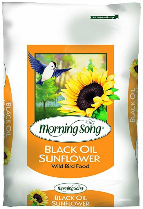 Morning Song 11410 Black Oil Sunflower Wild Bird Food
