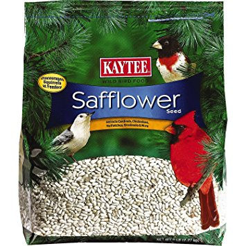 Kaytee Safflower Seed