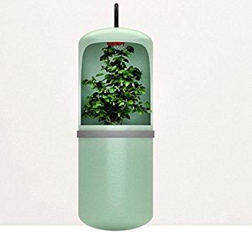 LEMON KOKO Arboreal Climb Pet Self Circulating Humidifier