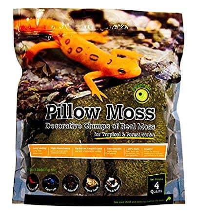 Galápagos (05234) Pillow Moss