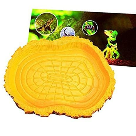 Big Bazaar Reptile Water Dish