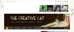 The Creative Cat