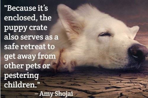 """""""Because it's enclosed, the puppy crate also serves as a safe retreat to get away from other pets or pestering children."""" - Amy Shojai"""