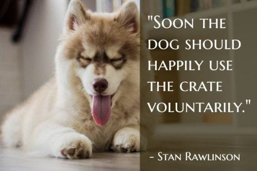 """""""Soon the dog should happily use the crate voluntarily."""" - Stan Rawlinson"""