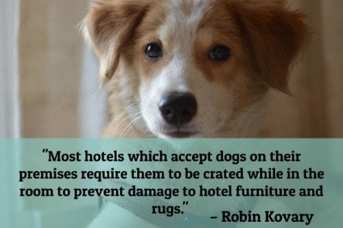 """""""Most hotels which accept dogs on their premises require them to be crated while in the room to prevent damage to hotel furniture and rugs.""""-Robin Kovary"""