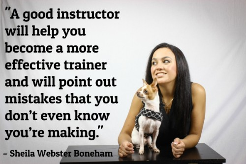 """""""A good instructor will help you become a more effective trainer and will point out mistakes that you don't even know you're making.""""-Sheila Webster Boneham"""