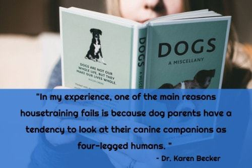 """""""In my experience, one of the main reasons housetraining fails is because dog parents have a tendency to look at their canine companions as four-legged humans."""" - Dr. Karen Becker"""