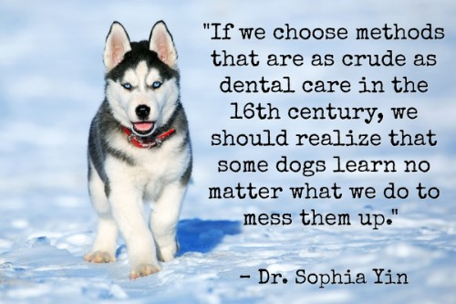 """""""If we choose methods that are as crude as dental care in the 16th century, we should realize that some dogs learn no matter what we do to mess them up.""""-Dr. Sophia Yin"""
