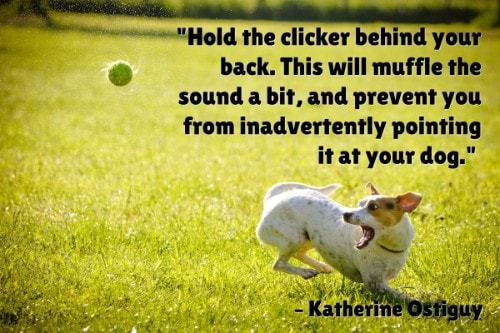 """""""Hold the clicker behind your back. This will muffle the sound a bit, and prevent you from inadvertently pointing it at your dog."""" - Katherine Ostiguy"""