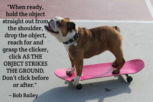 """""""When ready, hold the object straight out from the shoulder, drop the object, reach for and grasp the clicker, click AS THE OBJECT STRIKES THE GROUND. Don't click before or after."""" - Bob Bailey"""