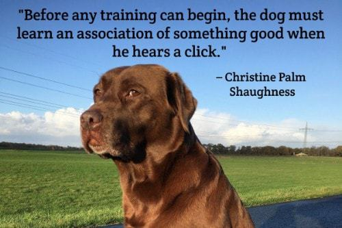 """""""Before any training can begin, the dog must learn an association of something good when he hears a click."""" - Christine Pam Shaughness"""