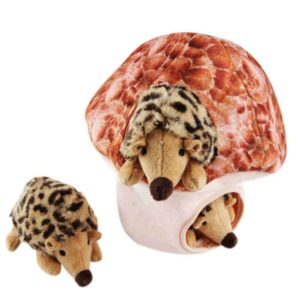 IFOYO Dog Squeaky Toy
