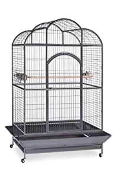 Prevue Hendryx Signature Series Wrought Iron Silverado Macaw Dometop Bird Cage
