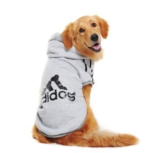 Adidog Dog Hoodies