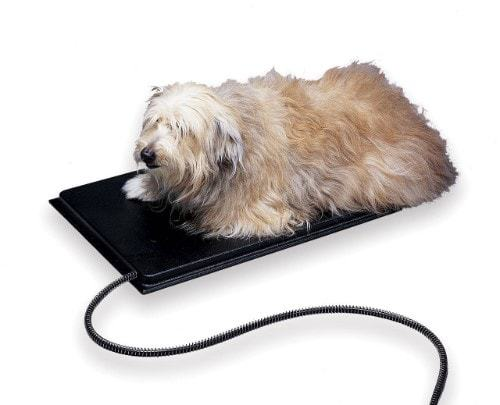 Allied Heated Pet Mat
