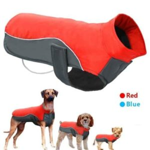 Didog Reflective Dog Winter Coat-min