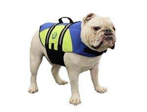 Paws Aboard Neoprene Doggy Life Jacket