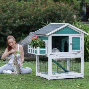PetsFit Outdoor Rabbit Hutch with Run