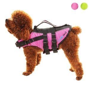 Scenereal Dog Life Jacket