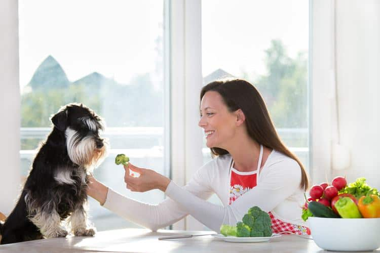 Woman giving dog broccoli