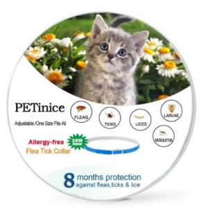 petinice flea and tick prevention