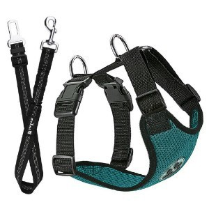 Slowton Dog Car Harness