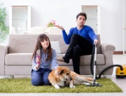 The Best Vacuums for Pet Hair