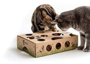 Cat Amazing Treat Maze & Puzzle Feeder
