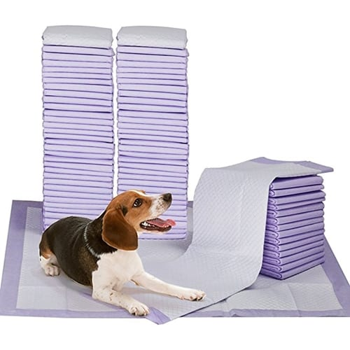 Petphabet Puppy Training Pads with Lavender Scent