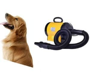 BORYLI Dog Grooming Dryer