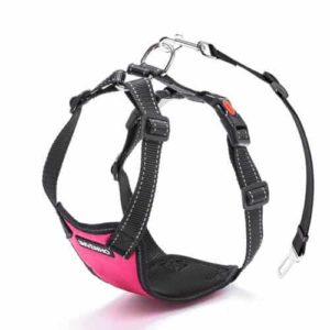 DOGJOG Dog Car Harness